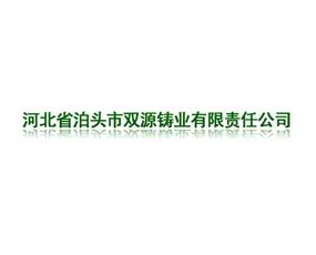 河北省泊头市双源铸业有限责任公司