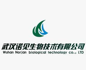 武汉诺见生物技术有限公司