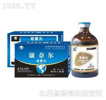 能量元-不食衰竭综合征特效药