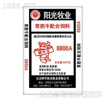 阳光-育肥牛配合饲料8800A