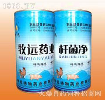 杆菌净-鸭浆膜炎特效药、主治心包炎、肝周炎