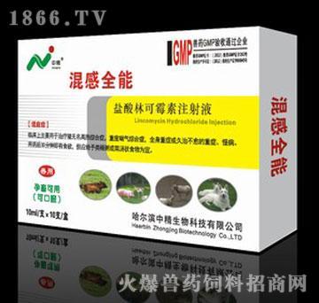 混感全能-盐酸林可霉素注射液,主治无名高热、全身重症感染