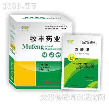 支原净-猪喘气病、萎缩性鼻炎、猪血痢用什么药