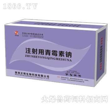 注射用青霉素钠-主治肺炎、败血症、肺脓肿、化脓性支气管炎