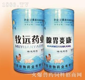 腺胃炎康-家禽腺胃炎专用药