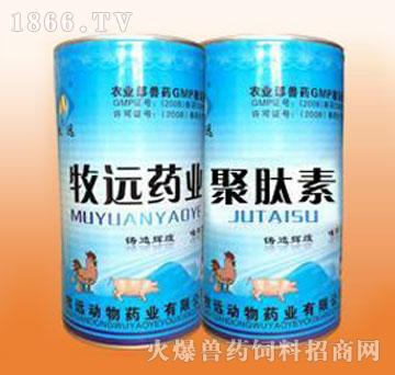 聚肽素-专治热毒型禽流行性感冒、发热型新城疫