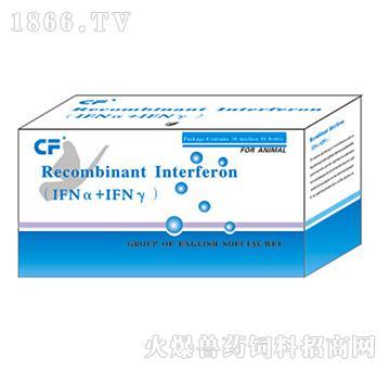 禽(1FNα+IfNγ)干扰素-防治禽新城疫、流感、法氏囊