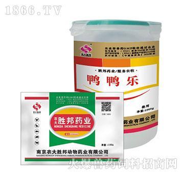 鸭鸭乐-主治鸭传染性浆膜炎、心包炎、气囊炎、腹膜炎、败血症