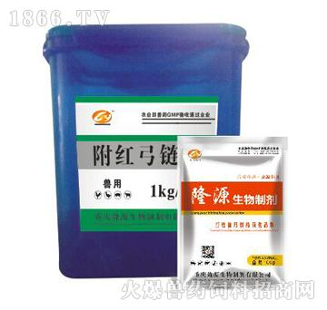附红弓链康-主治猪高热不退、萎缩性鼻炎、痢疾、黄疸