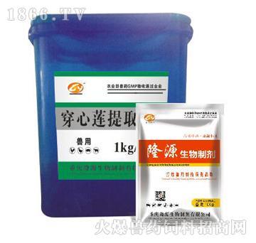 穿心莲提取物-清热解毒、抗菌消炎、消肿止痛