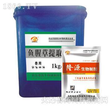 鱼腥草提取物-清热解毒、凉血利咽、消肿止泻