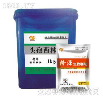 头孢西林-雏禽开口药、预防脱肛、肛裂及血便蛋