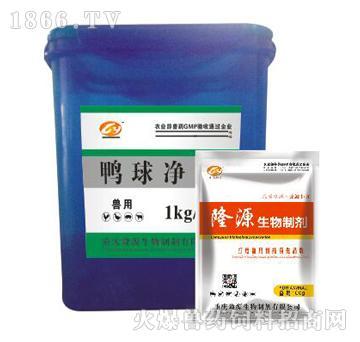 鸭球净-主治小肠球虫、盲肠球虫及坏死性肠炎