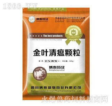 金叶清瘟颗粒-清瘟败毒,抗菌消炎,防治猪繁殖与呼吸综合症