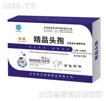 精品头孢-主治急慢性乳腺炎、产后感染综合症、顽固性下痢
