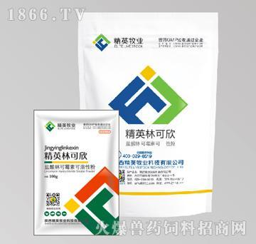 精英林可欣-主治梭菌感染、猪痢疾、回肠炎和支原体感染