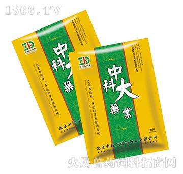 穿心莲提取物-清热解毒、抗菌消炎,主治呼吸道感染、痢疾