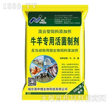 牛羊专用活菌制剂-牛羊养胃、开胃、健胃、护胃的专用产品