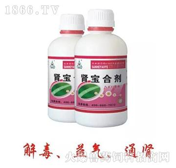 肾宝合剂-主治禽花斑肾、肾脏肿大、禽肾型传支特效药