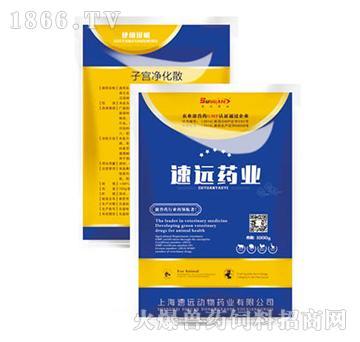 子宫净化散-主治各种子宫内膜炎