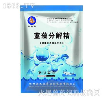 蓝藻分解精-防治鱼虾、海参应激反应