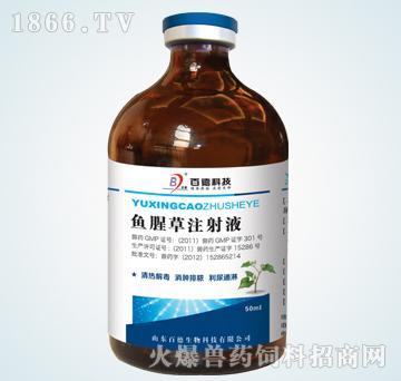 鱼腥草注射液-主治肺痈,痢疾,乳痈,淋浊