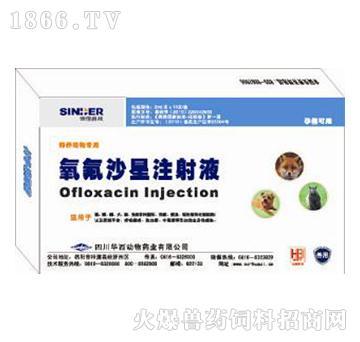 貂狐救命针-主治细菌性肠炎、病毒性腹泻,胃肠炎