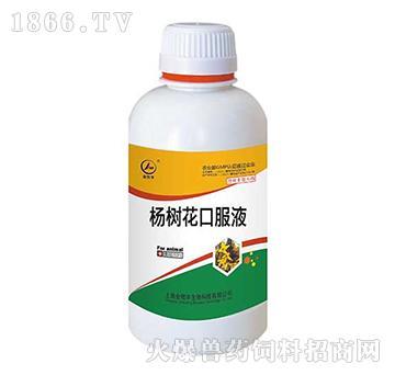 杨树花口服液-归胃肠经、清热解毒、涩肠止泻、化湿止痢、健脾养胃