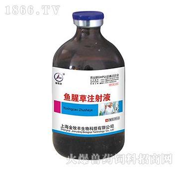 鱼腥草注射液-清热解毒,消肿排脓,利尿通淋