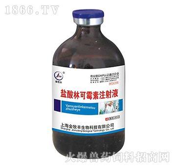 盐酸林可霉素注射液-用于支原体及敏感革兰氏阳性、阴性菌感染