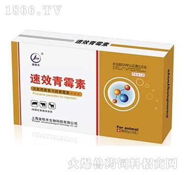 速效青霉素-用于对青霉素敏感菌引起的全身性各种感染