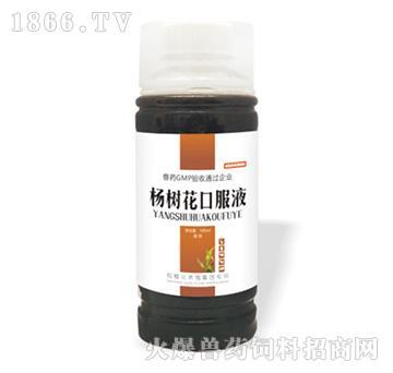 杨树花口服液-主治痢疾,肠炎
