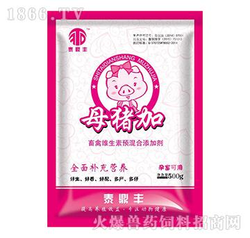 母猪加-真正用眼睛能看见效果的母猪增殖产品!