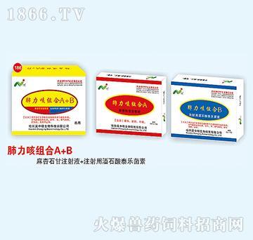 肺力咳组合-主治肺部、支气管感染性疾病