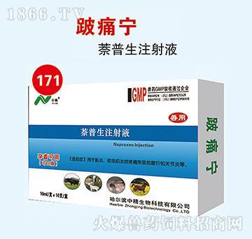 跛痛宁-用于肌炎、软组织炎症疼痛所致的跛行和关节炎等