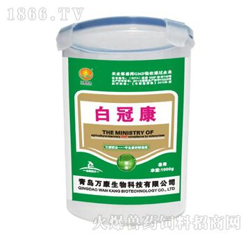 白冠康-主治鸡鸭白冠病(禽白细胞原虫病)引起的体温升高