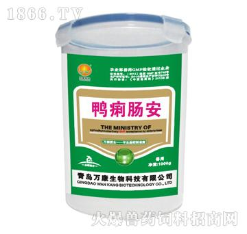 鸭痢肠安-主治鸭鹅传染性浆膜炎、纤维素性心包炎