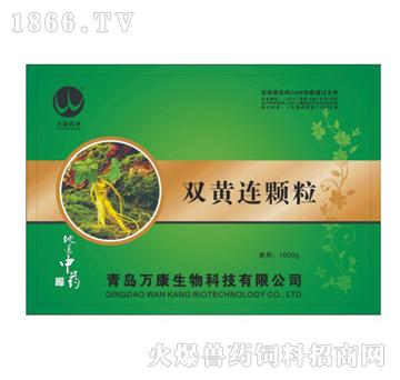 双黄连颗粒-清热解毒、辛凉解表、凉血止痢、抗菌消炎