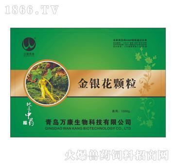 金银花颗粒-主治温病发热、风热感冒、肺热咳嗽、咽喉肿痛