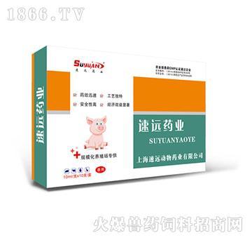 补铁生血素-增进造血机能