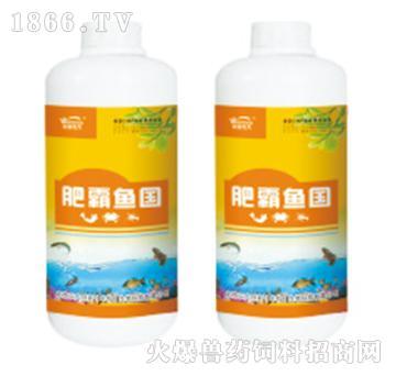 肥霸鱼国-速效肥水剂,低温培肥、高温保肥,稳定水色30天以上