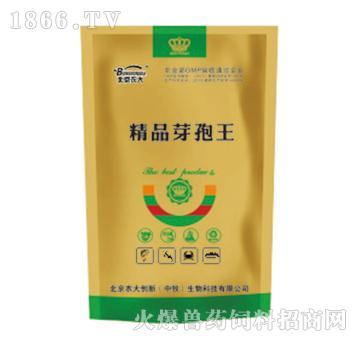 精品芽孢王-改善底质,稳定酸碱度