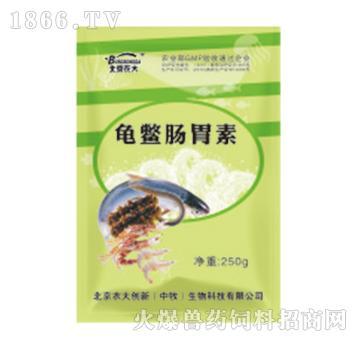 龟鳖肠胃素-调理龟鳖胃肠功能、恢复正常消化力