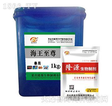 海王至尊-用于海参病毒性细菌性化皮、肿嘴、吐肠