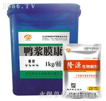 鸭浆膜康-用于传染性浆膜炎,鸭大肠杆菌、沙门氏菌,霍乱