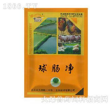 球肠净-用于预防及治疗球虫病