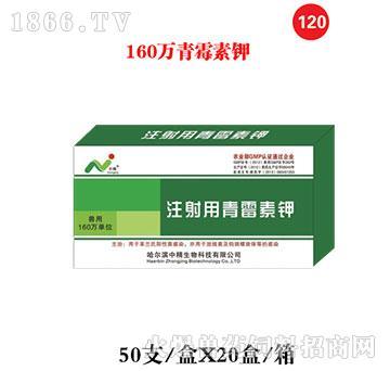 160万青霉素钾-主治猪丹毒、气肿疽、恶性水肿、放线菌病