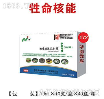 牲命核能-维生素B2注射液