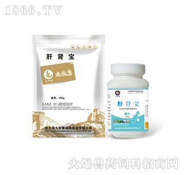 肝肾宝-保肝利胆、清热利湿、排石、消肿、渗湿
