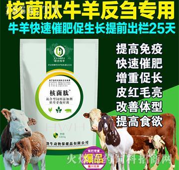 核菌肽牛羊反刍专用